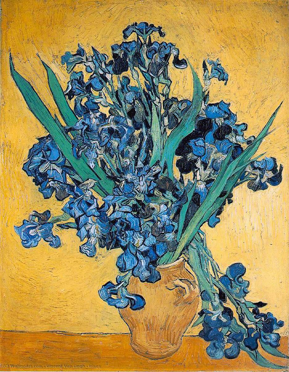 famous painting Irises of Vincent Van Gogh