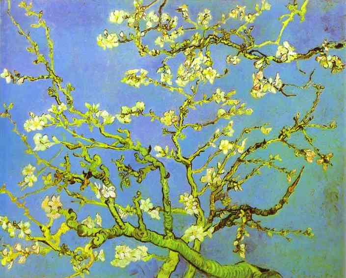 famous painting Branches of Almond tree in Bloom. Saint-Rémy of Vincent Van Gogh