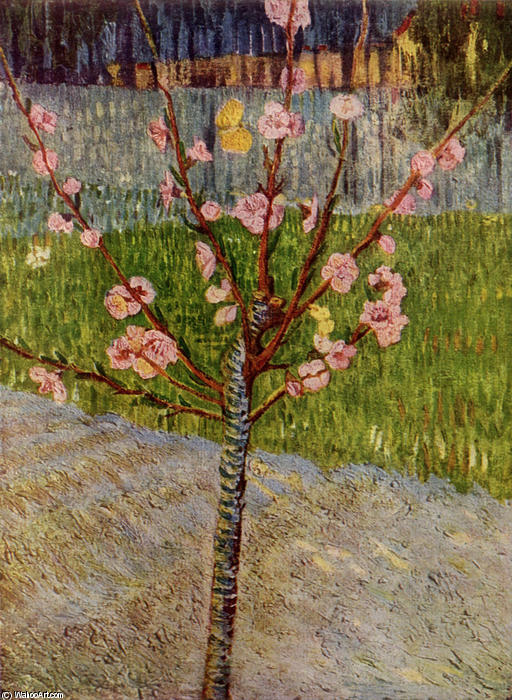 Order Reproductions | Almond Tree in Blossom by Vincent Van Gogh | Most-Famous-Paintings.com