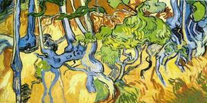 Vincent Van Gogh - Tree Roots and Trunks