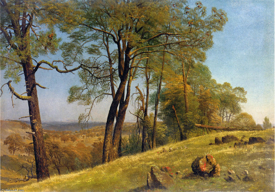 famous painting Landscape, Rockland County, California of Albert Bierstadt