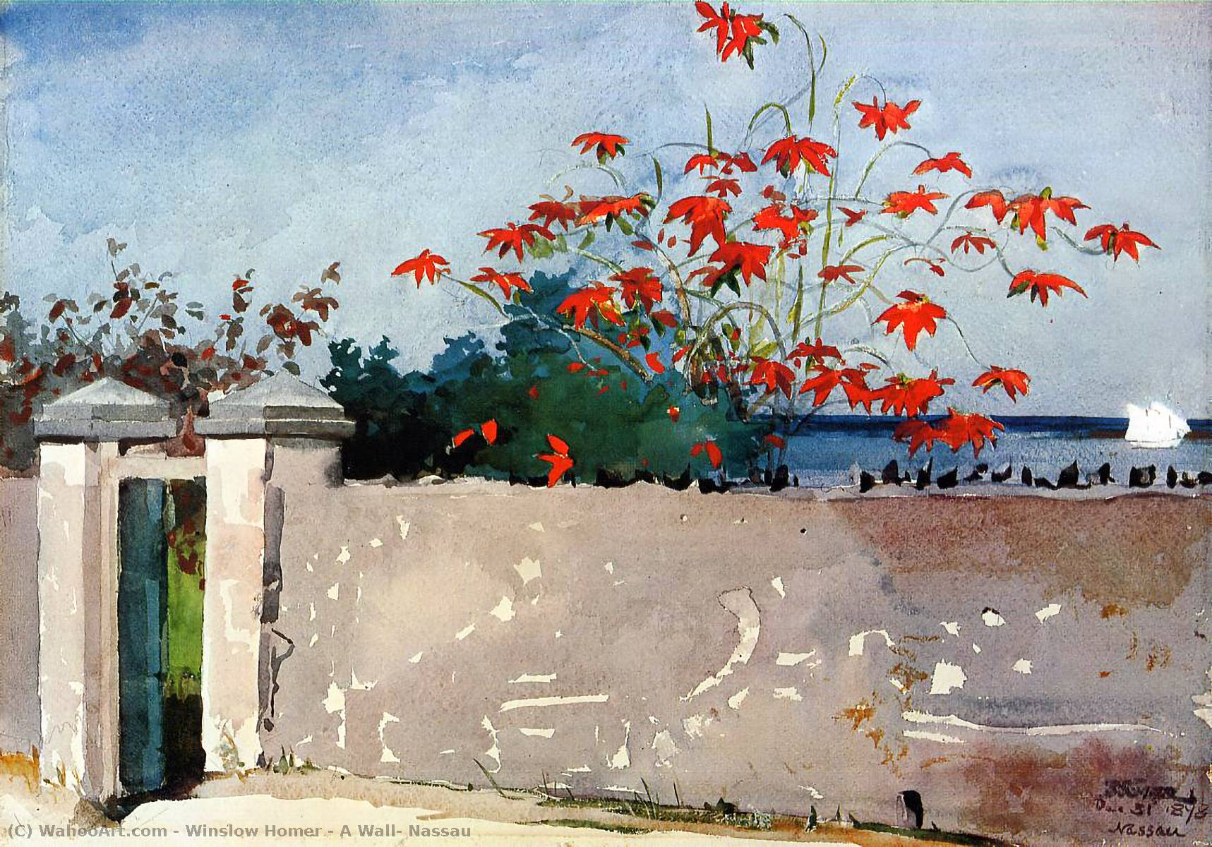 famous painting A Wall, Nassau of Winslow Homer
