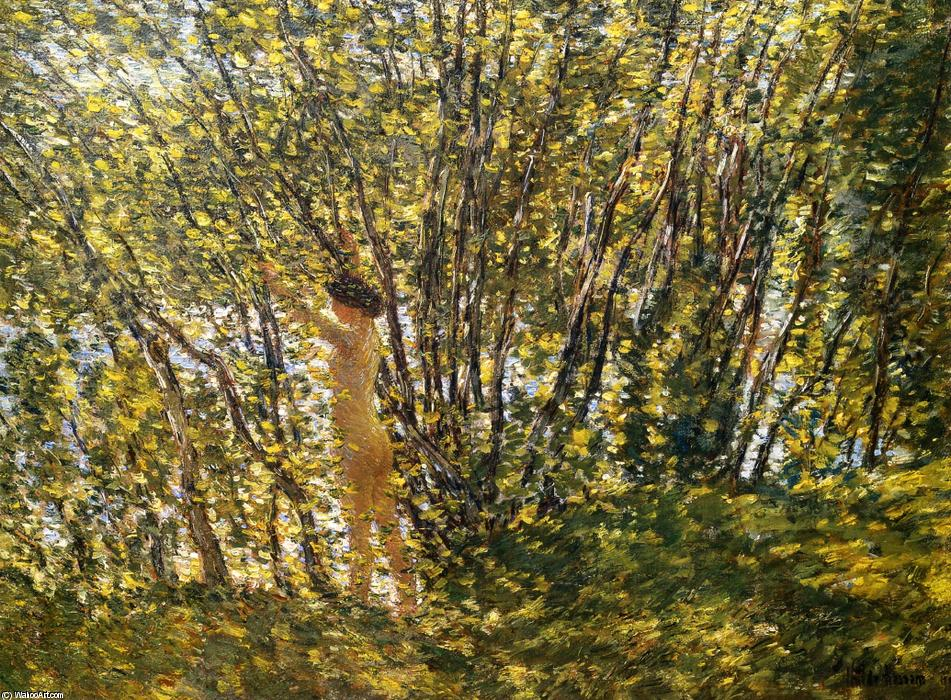 famous painting Nude in Sunlilt Wood of Frederick Childe Hassam