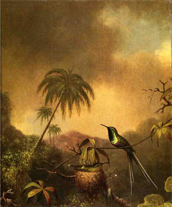 famous painting Thorn-Tail, Brazil of Martin Johnson Heade