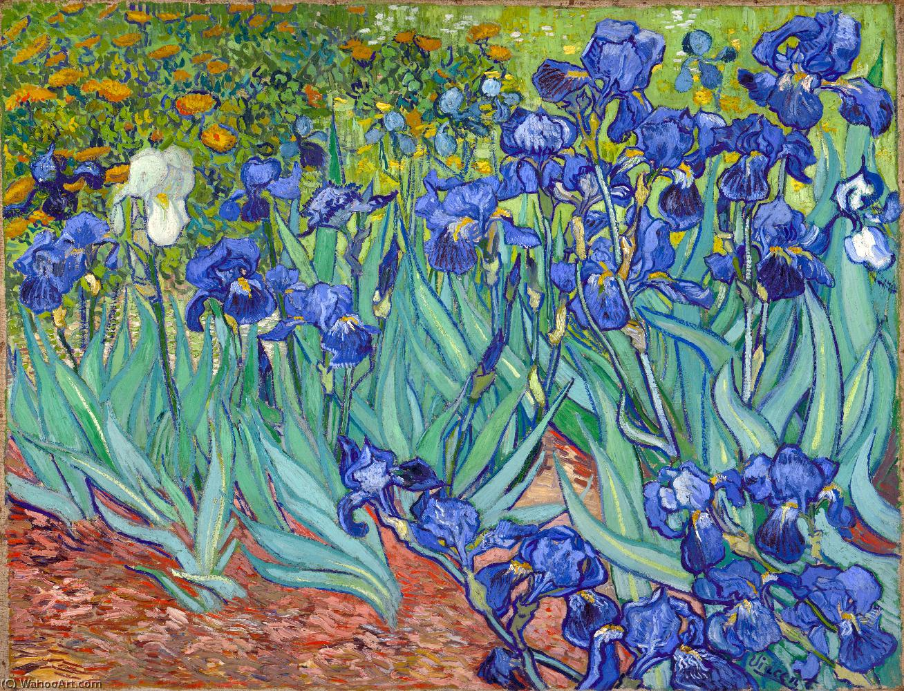 Order Art Reproductions | Irises by Vincent Van Gogh | Most-Famous-Paintings.com