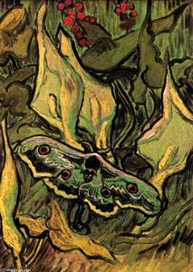 Vincent Van Gogh - Great Peacock Moth