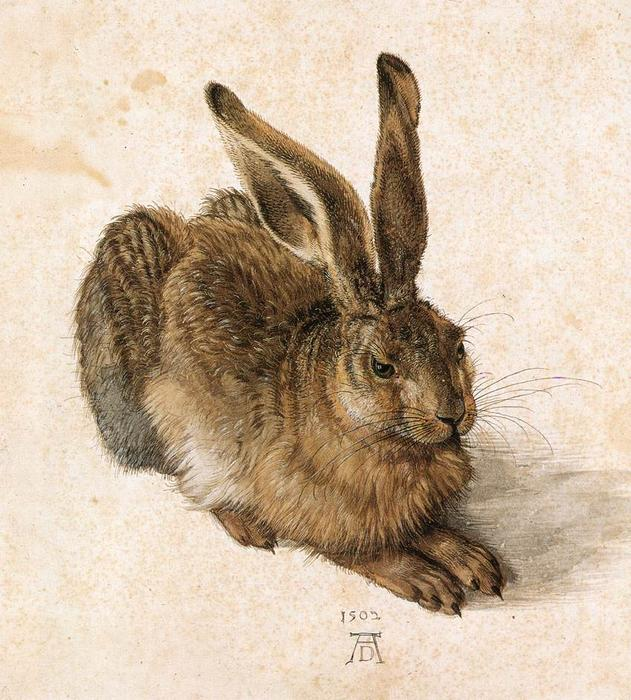 famous painting Young Hare of Albrecht Durer