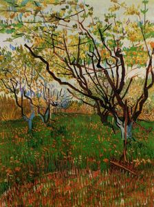 Vincent Van Gogh - Orchard in Bloom