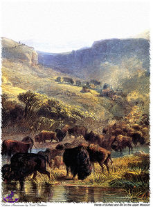 Karl Bodmer - sharper native americans (9)