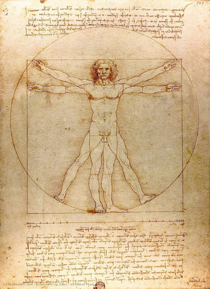 Buy Museum Art Reproductions | Vitruvian Man by Leonardo Da Vinci | Most-Famous-Paintings.com